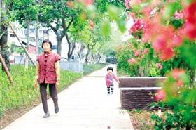 本报讯 昨日记者走访鸳鸯池公园时看到,不少市民在鸳鸯池公