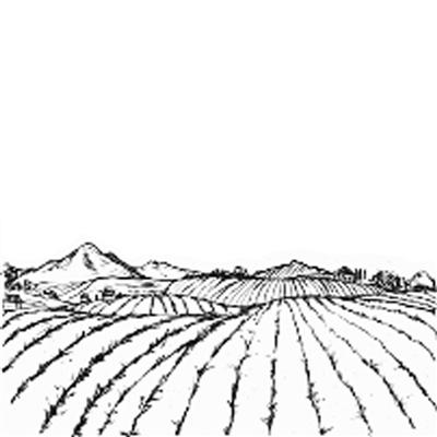 热带自然原始岛屿简笔画