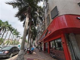 大王椰树太过茂盛 枝干长进居民楼里 望定期修剪